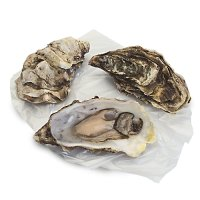 Waitrose fresh Scottish oyster