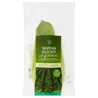 Waitrose Organic pointed cabbage