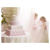 Fiona Cairns Pink & White Polka Dots & Roses 4-tier Wedding Cake (Chocolate & Fruit)