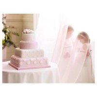 Fiona Cains Pink & White Polka Dots & Roses 4-tier Wedding Cake (Sponge)