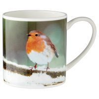Waitrose Photo Robin Mug
