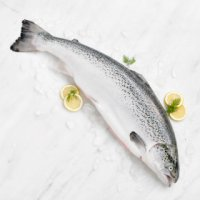 Entertaining Fresh Whole Scottish Salmon (Large)
