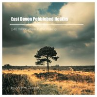 East Devon Pebblebeds Heath by Andrew Cooper