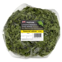Waitrose Ltd Selection seasonal lettuce