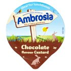Ambrosia Chocolate Custard