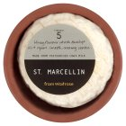 Waitrose St. Marcellin Cheese, France - 80g