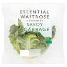 essential Waitrose savoy cabbage - each