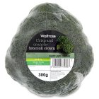 Waitrose broccoli crown - 300g