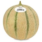 essential Waitrose cantaloupe melon - each