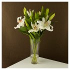 Waitrose Oriental lilies white large - bunch