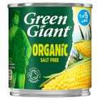 Green Giant sweetcorn - drained 140g Brand Price Match - Checked Tesco.com 02/09/2015