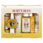Burt's Bees Head to Toe Kit -