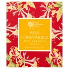 RHS glass candle wild honeysuckle -