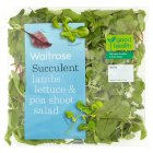 Waitrose tenderleaf salad - 100g