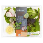 Waitrose Fruity Garden Side Salad - 130g