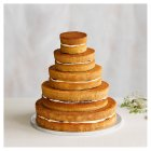Naked 5 tier Wedding Cake, vanilla sponge (5 tiers) - each