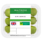 Waitrose Limited Edition Kiwi Berries - 125g
