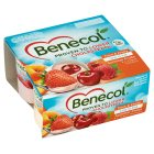 Benecol low fat yogurts summer fruits - 4x120g Brand Price Match - Checked Tesco.com 16/04/2014
