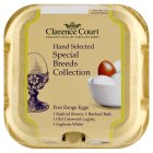 Clarence Court Special Breeds Collection mixed weight British free range eggs