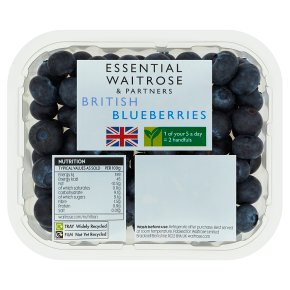 Essential Blueberries