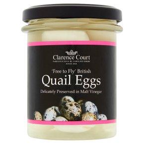 Clarence Court quail eggs