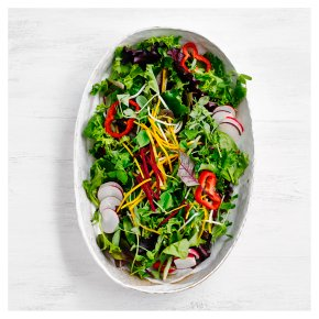 2 Rainbow Salad Bowls