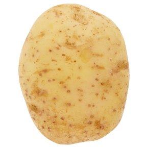 Large White Potatoes