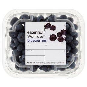 Scottish Blueberries
