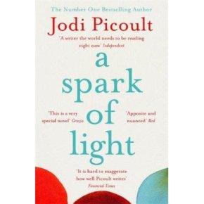 Spark Of Light Jodi Picoult