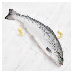 Duchy Organic Whole Orkney Salmon