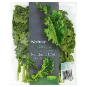 Pentland Brig Kale