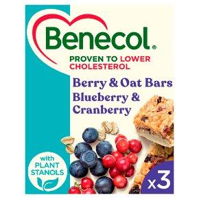Benecol Fruit & Oat Bars Blueberry Cranberry