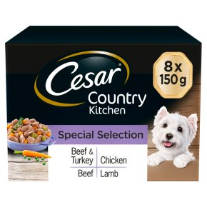 CESAR Country Kitchen Dog Trays Special Selection in Gravy 8 x 150g