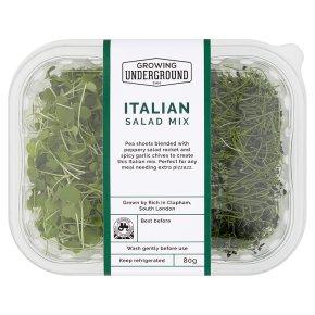 Growing Underground Italian Salad Mix