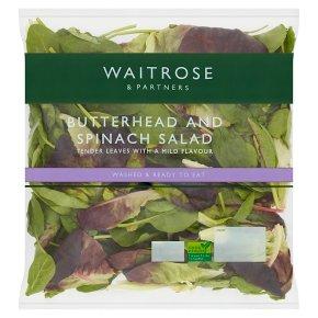 Waitrose butterhead salad