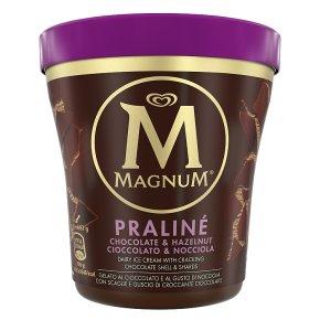 Magnum Praliné Ice Cream Tub