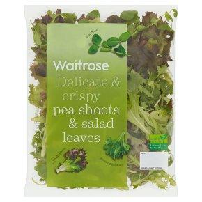 Waitrose Peashoots & Salad Leaves