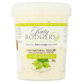 Katy Rodgers natural yogurt gooseberry